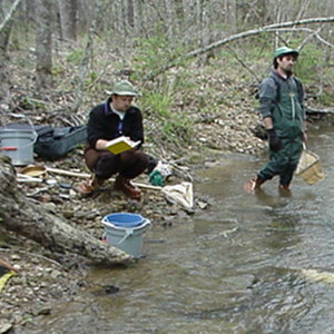 People sampling Rock-Wats Branch