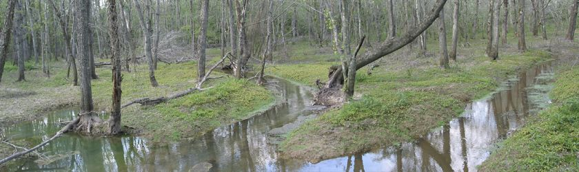 Image of Terrapin Creek