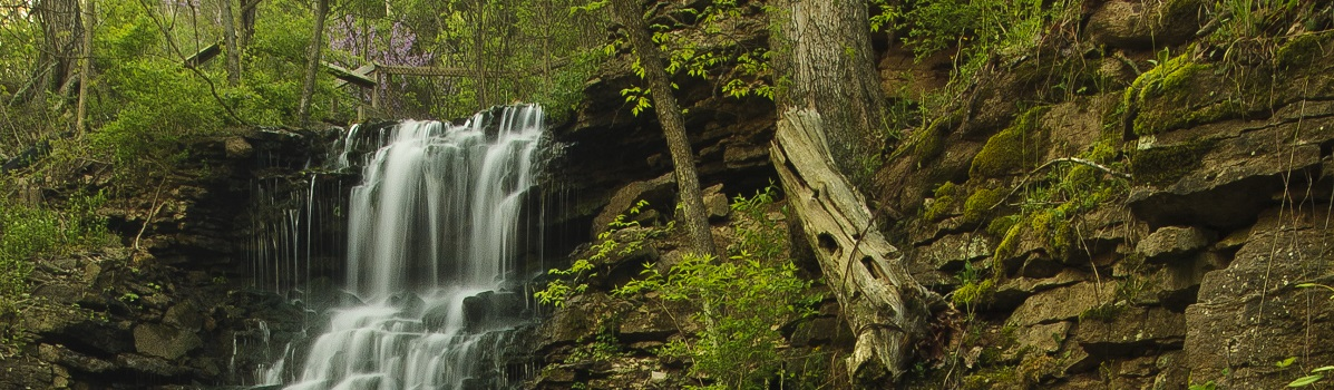 Hurst falls is a popular attraction at Cove Springs Nature Preserve.