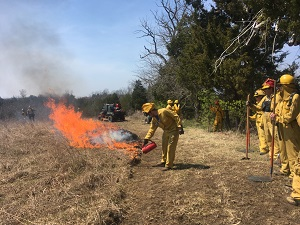 Prescribed burning in a grassland